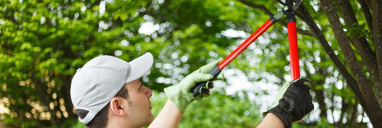 Gartenarbeiten U2022 Garten  Und Landschaftsbau Ludger Diesch